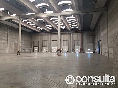 Planta baja - Nave industrial en alquiler en polígono Zal II, Zona Franca- Port en Barcelona - 370500243