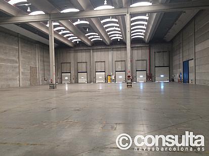 Planta baja - Nave industrial en alquiler en polígono Zal II, Zona Franca- Port en Barcelona - 370500249