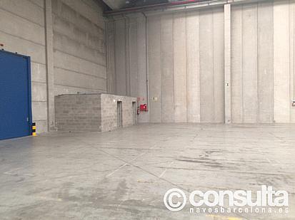 Planta baja - Nave industrial en alquiler en polígono Zal II, Zona Franca- Port en Barcelona - 370500258
