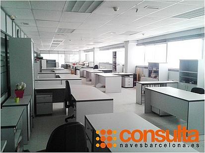 Nave industrial en alquiler en calle Ab, Sant Esteve Sesrovires - 261932754