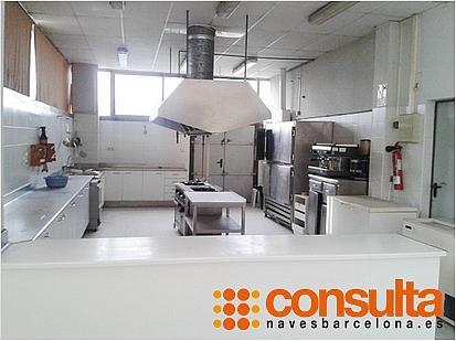 Nave industrial en alquiler en calle Ab, Sant Esteve Sesrovires - 261932757