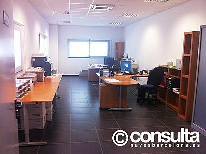 Oficina - Nave industrial en alquiler en polígono Sant Feliu de Buixalleu, Sant Feliu de Buixalleu - 152623443