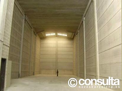Planta baja - Nave industrial en alquiler en polígono Parc del Moli, Barbera del Vallès - 222222210