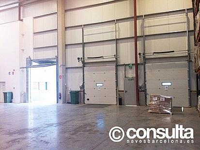 Planta baja - Nave industrial en alquiler en polígono Sant Feliu de Buixalleu, Sant Feliu de Buixalleu - 152623446