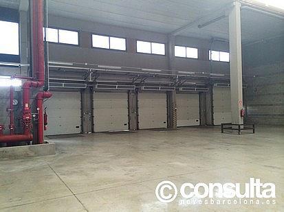 Planta baja - Nave industrial en alquiler en polígono Zona Franca, Zona Franca- Port en Barcelona - 159345076