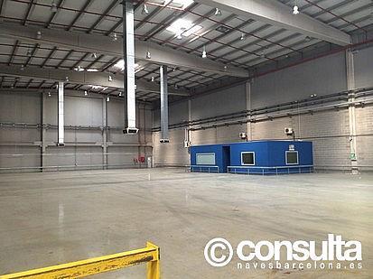 Planta baja - Nave industrial en alquiler en polígono Zona Franca, Zona Franca- Port en Barcelona - 159345080