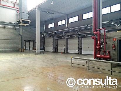 Planta baja - Nave industrial en alquiler en polígono Zona Franca, Zona Franca- Port en Barcelona - 159345083