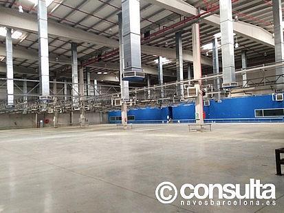 Planta baja - Nave industrial en alquiler en polígono Zona Franca, Zona Franca- Port en Barcelona - 159345089