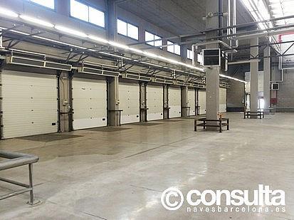 Planta baja - Nave industrial en alquiler en polígono Zona Franca, Zona Franca- Port en Barcelona - 159345091