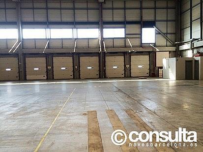 Planta baja - Nave industrial en alquiler en polígono Zona Franca, Zona Franca- Port en Barcelona - 159345101