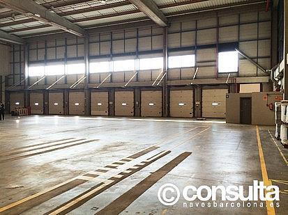 Planta baja - Nave industrial en alquiler en polígono Zona Franca, Zona Franca- Port en Barcelona - 159345104