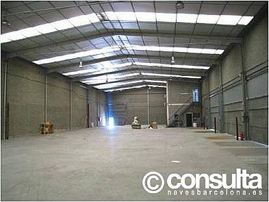 Planta baja - Nave industrial en alquiler en polígono Pla D'en Coll, Pla d´en Coll en Montcada i Reixac - 215381567