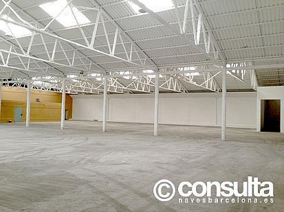 Nave industrial en alquiler en polígono Cami del Mig, Cabrera de Mar - 222851905