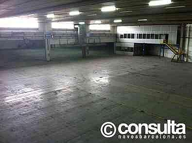 Planta baja - Nave industrial en alquiler en polígono Castellbisbal Sud, Castellbisbal - 227893092