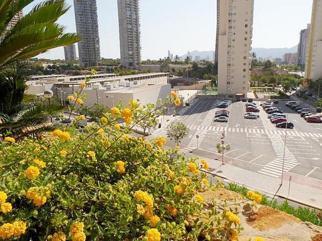 General - Apartamento en venta en calle Playa Poniente, Benidorm - 288610510