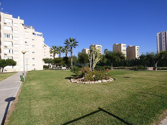 General - Apartamento en venta en urbanización Urbanova Esc, Alicante/Alacant - 224758455