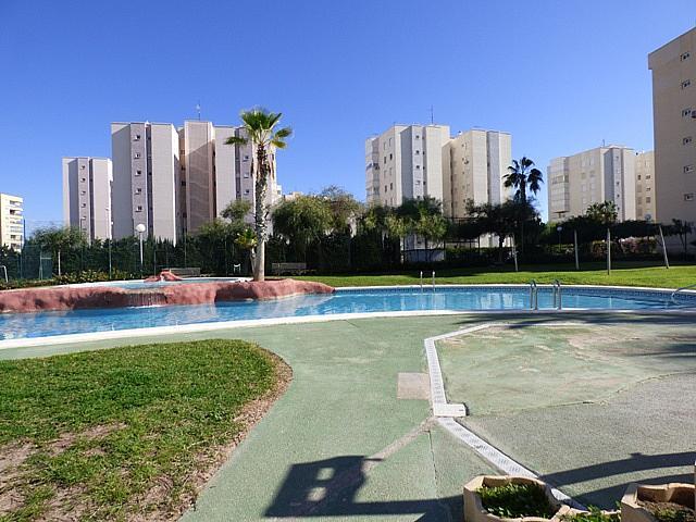 General - Apartamento en venta en urbanización Urbanova Esc, Alicante/Alacant - 271060513