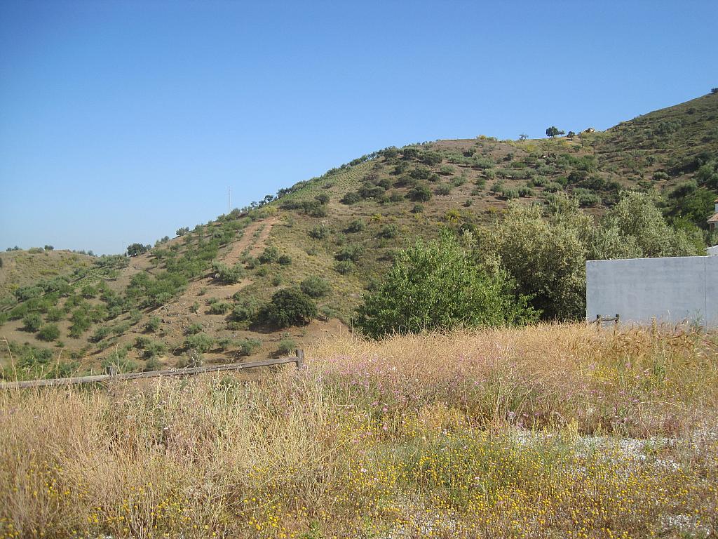 Casa rural en alquiler en calle Camino Sedella, Arenas de Velez - 267067592