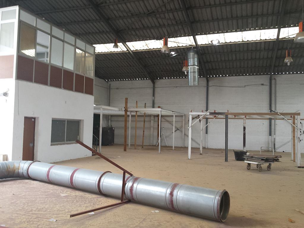 Nave industrial en alquiler en calle Juan de Juanes, La Mata-El Limonar en Vélez-Málaga - 237719337