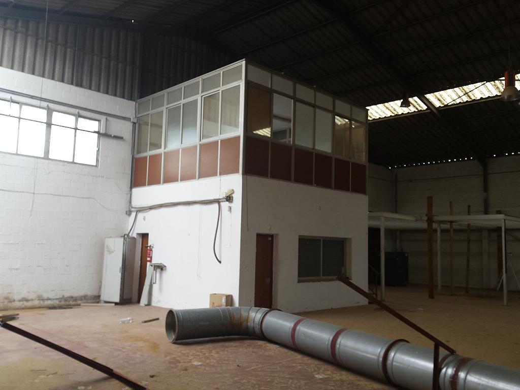Nave industrial en alquiler en calle Juan de Juanes, La Mata-El Limonar en Vélez-Málaga - 237719367