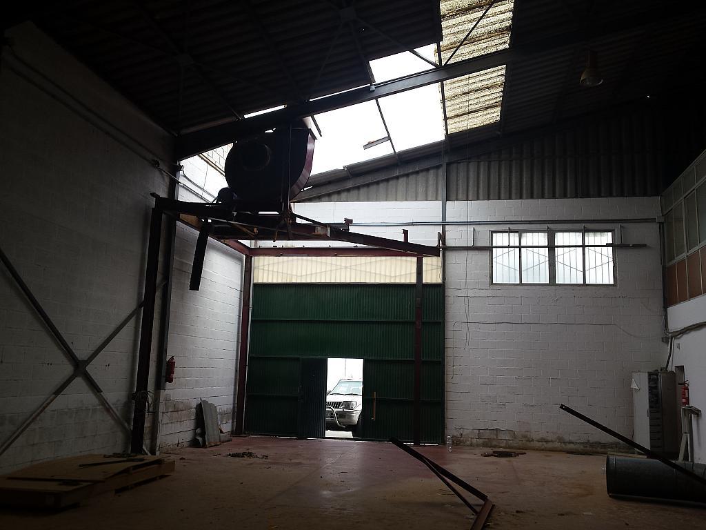 Nave industrial en alquiler en calle Juan de Juanes, La Mata-El Limonar en Vélez-Málaga - 237719401