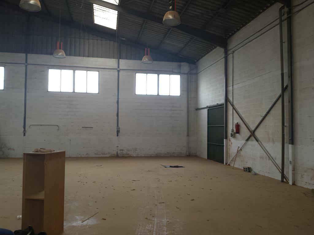 Nave industrial en alquiler en calle Juan de Juanes, La Mata-El Limonar en Vélez-Málaga - 237719430