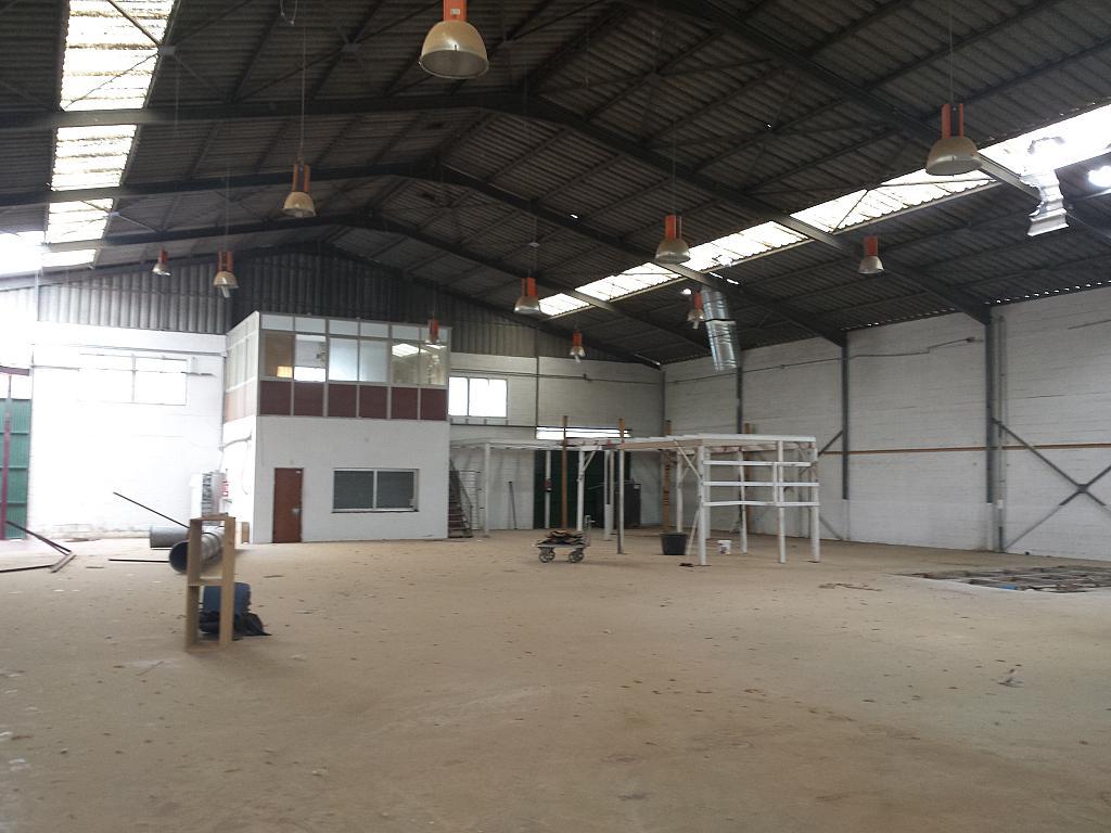 Nave industrial en alquiler en calle Juan de Juanes, La Mata-El Limonar en Vélez-Málaga - 237719645