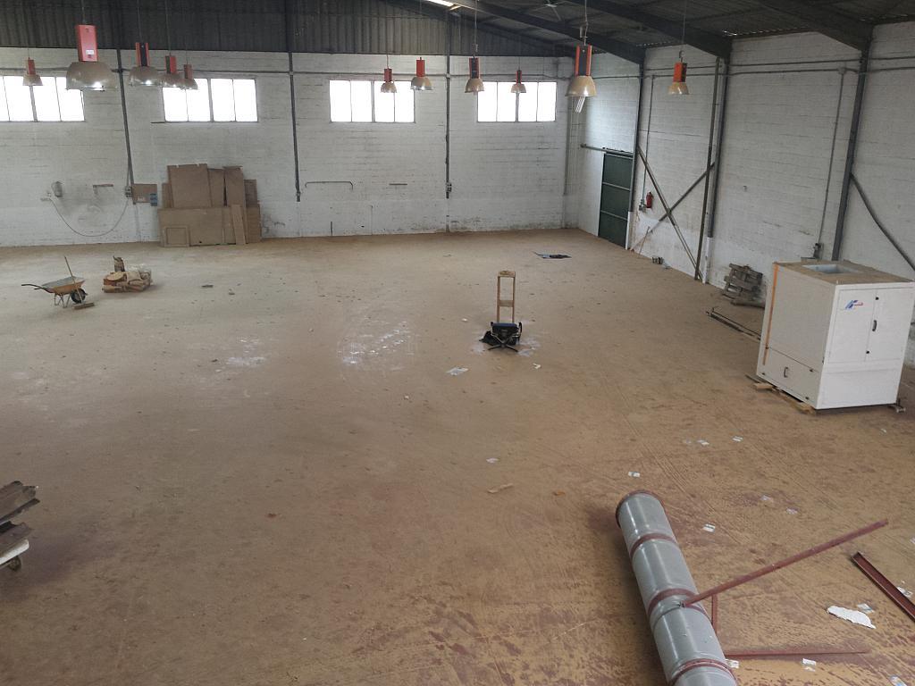 Nave industrial en alquiler en calle Juan de Juanes, La Mata-El Limonar en Vélez-Málaga - 237719697