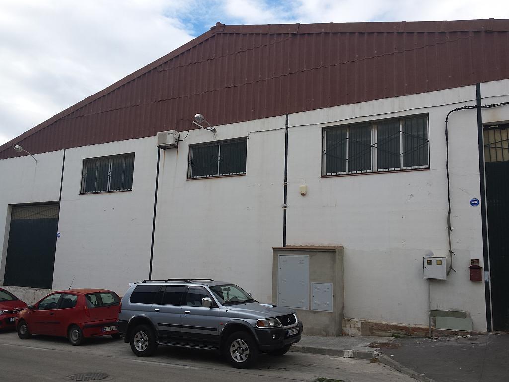 Nave industrial en alquiler en calle Juan de Juanes, La Mata-El Limonar en Vélez-Málaga - 237719898