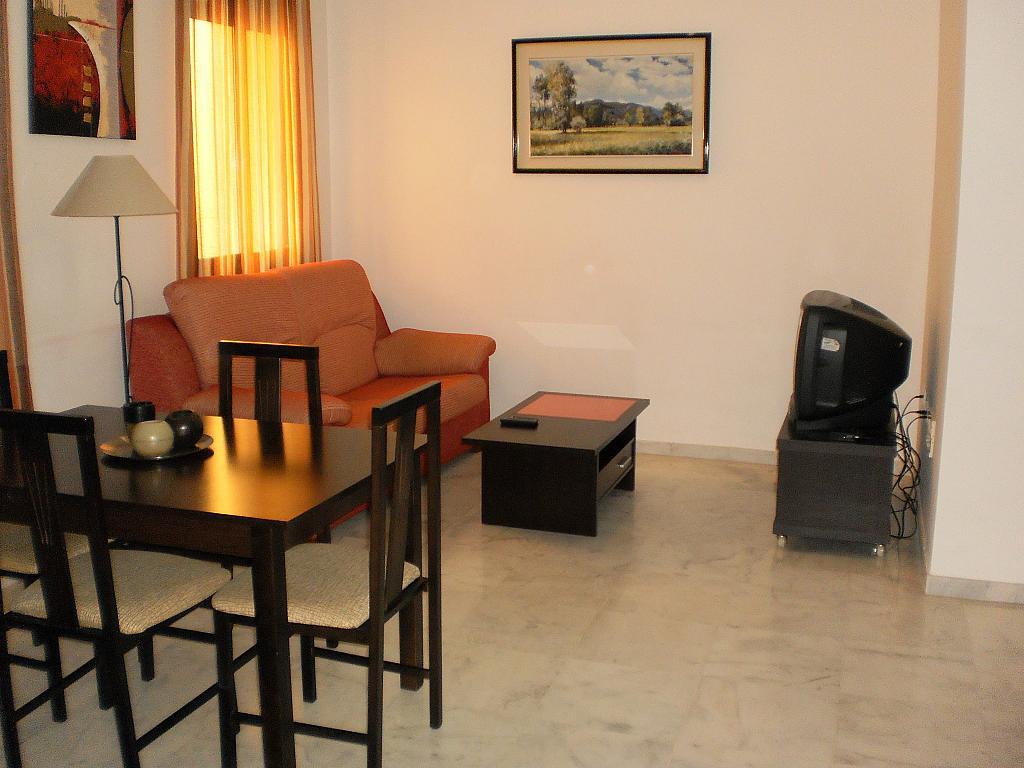 Salón - Apartamento en alquiler en calle Alfareria, Triana Casco Antiguo en Sevilla - 248352052