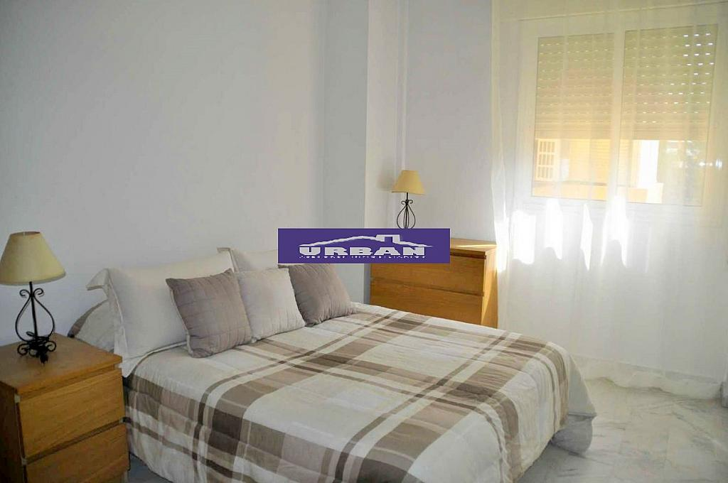 Apartamento en alquiler en calle De Las Ciencias, Av. Ciencias-Emilio Lemos en Sevilla - 273475286