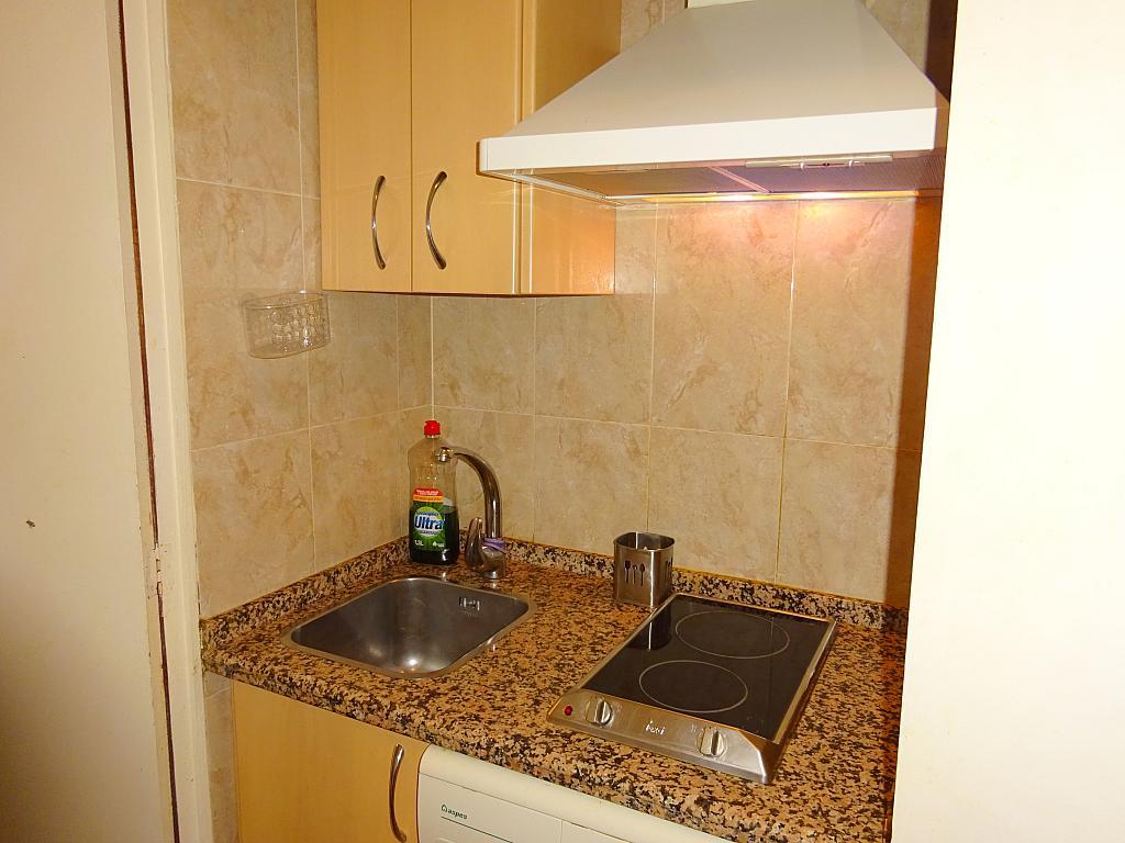 Cocina - Estudio en alquiler en calle Pages del Corro, Triana Casco Antiguo en Sevilla - 310873348