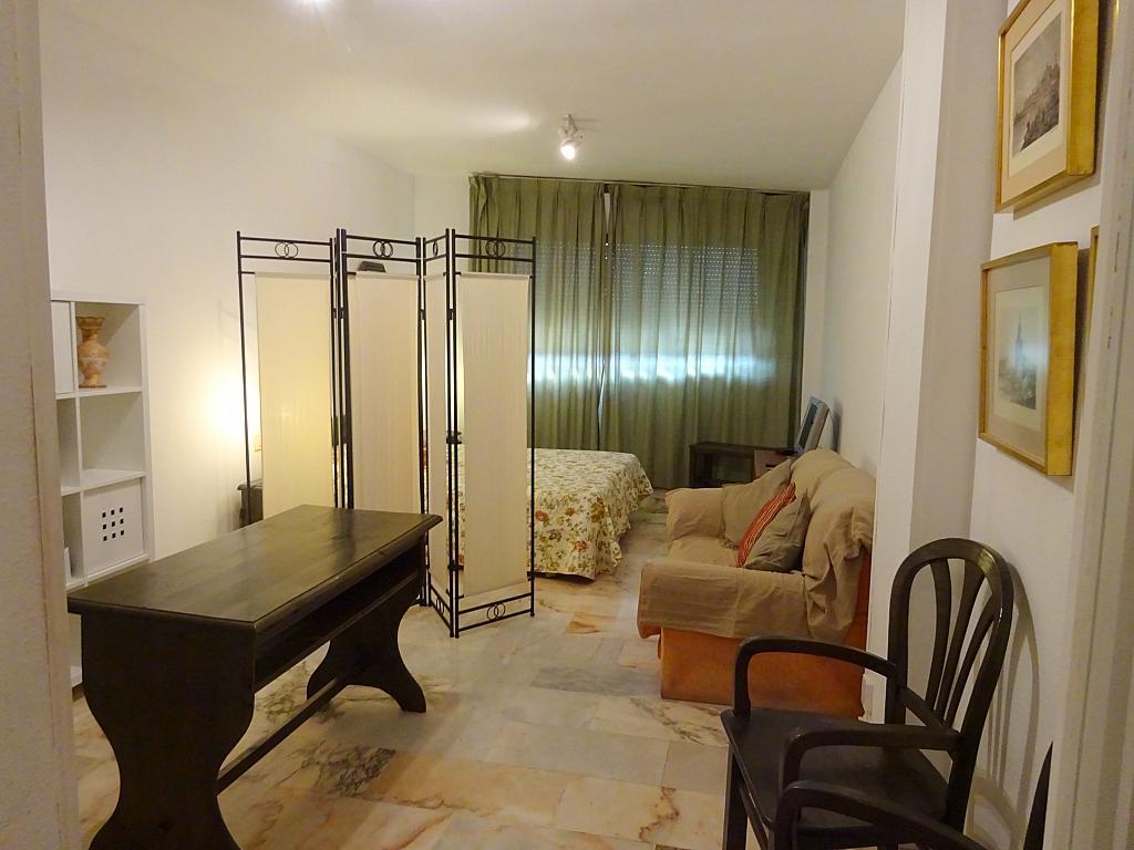 Salón - Estudio en alquiler en calle Alcalde Luis Uruñuela, Entrepuentes en Sevilla - 335743836