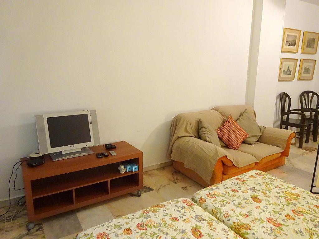 Salón - Estudio en alquiler en calle Alcalde Luis Uruñuela, Entrepuentes en Sevilla - 335743852