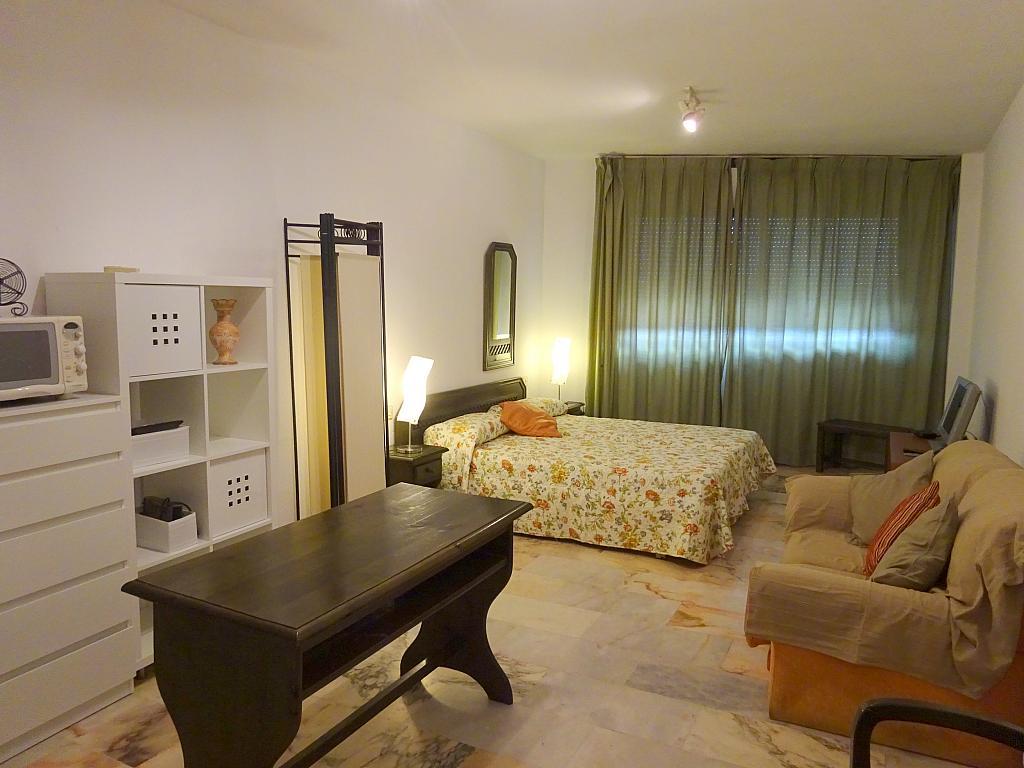 Salón - Estudio en alquiler en calle Alcalde Luis Uruñuela, Entrepuentes en Sevilla - 335743858