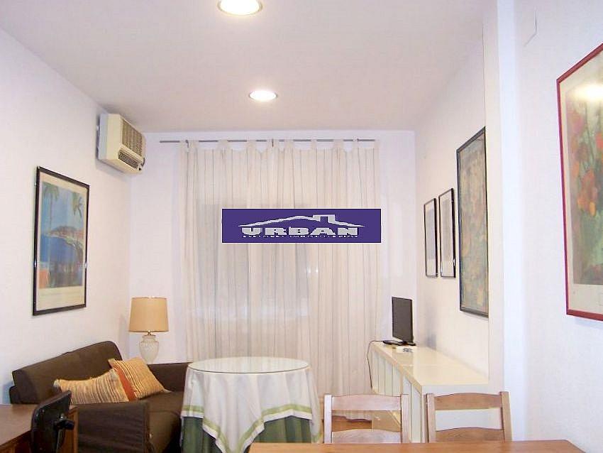 Salón - Apartamento en alquiler en calle Montecarmelo, Los Remedios en Sevilla - 343460741