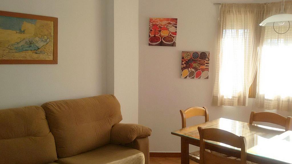 Salón - Apartamento en alquiler en calle Manuel Siurot, Bami en Sevilla - 350724109