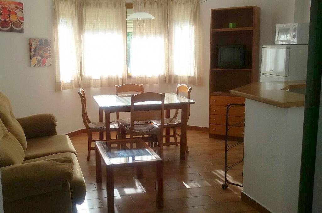 Salón - Apartamento en alquiler en calle Manuel Siurot, Bami en Sevilla - 350724127