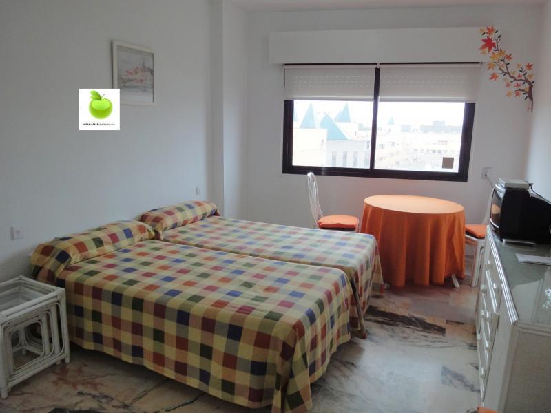 Estudio en alquiler en calle Alcalde Luis Uruñuela, Av. Ciencias-Emilio Lemos en Sevilla - 112923405