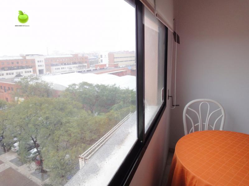 Estudio en alquiler en calle Alcalde Luis Uruñuela, Av. Ciencias-Emilio Lemos en Sevilla - 112923411