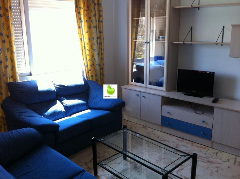 Apartamento en alquiler en calle De la Innovación, Este - Alcosa - Torreblanca en Sevilla - 116656887