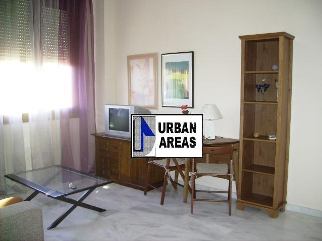 Apartamento en alquiler en calle Innovacion, Este - Alcosa - Torreblanca en Sevilla - 114343649