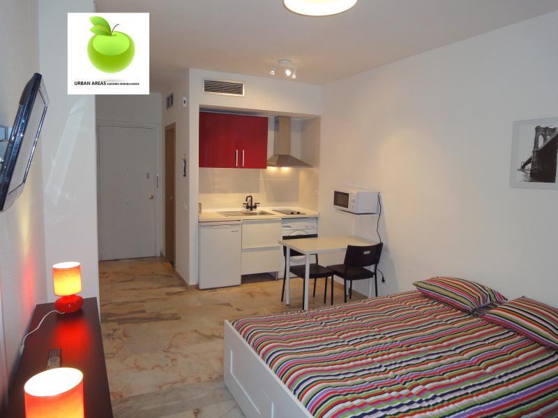 Estudio en alquiler en calle Alcalde Luis Uruñuela, Este - Alcosa - Torreblanca en Sevilla - 116624417