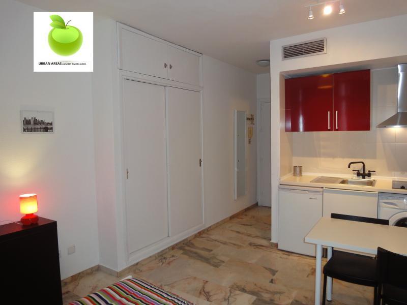 Estudio en alquiler en calle Alcalde Luis Uruñuela, Este - Alcosa - Torreblanca en Sevilla - 116624422
