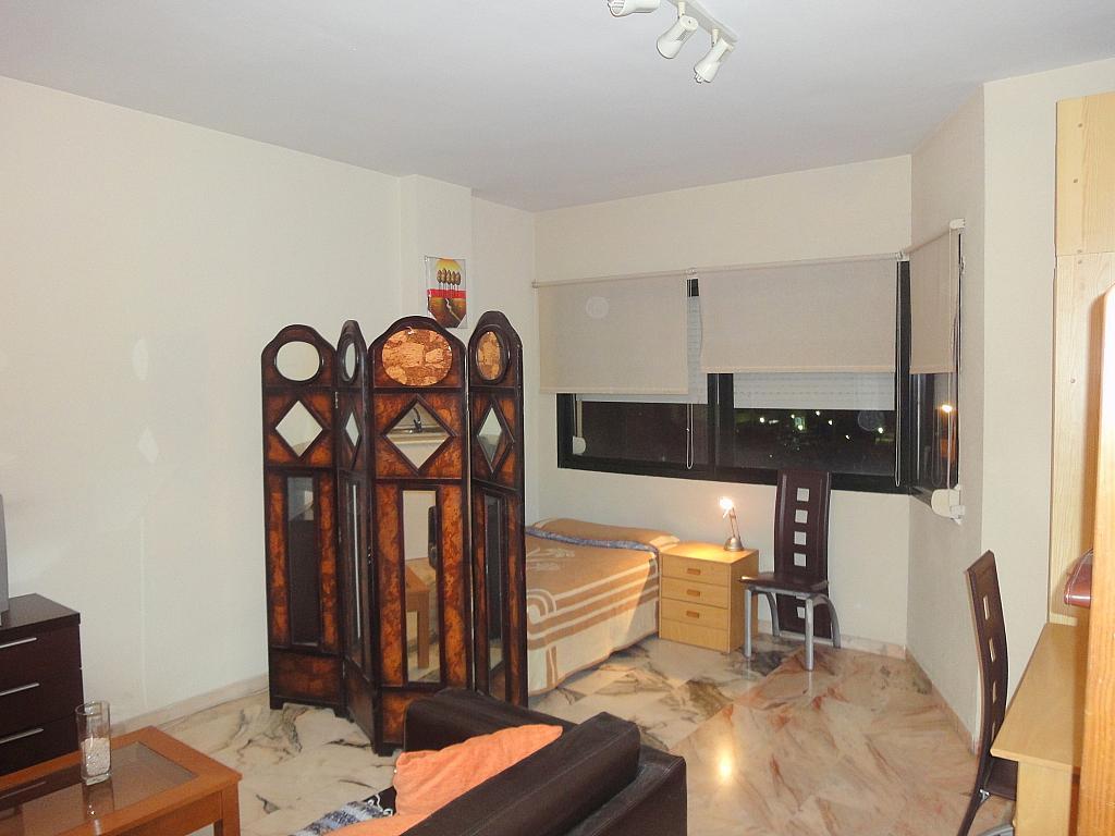 Estudio en alquiler en calle Alcalde Luis Uruñuela, Este - Alcosa - Torreblanca en Sevilla - 123701340