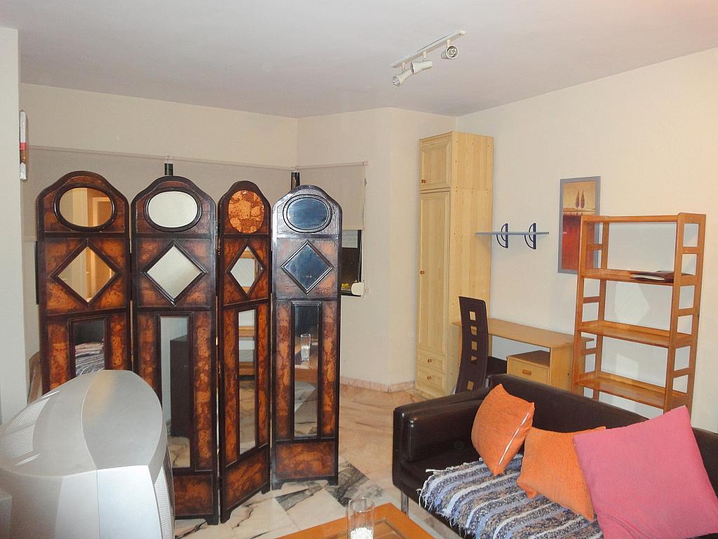 Estudio en alquiler en calle Alcalde Luis Uruñuela, Este - Alcosa - Torreblanca en Sevilla - 123701342