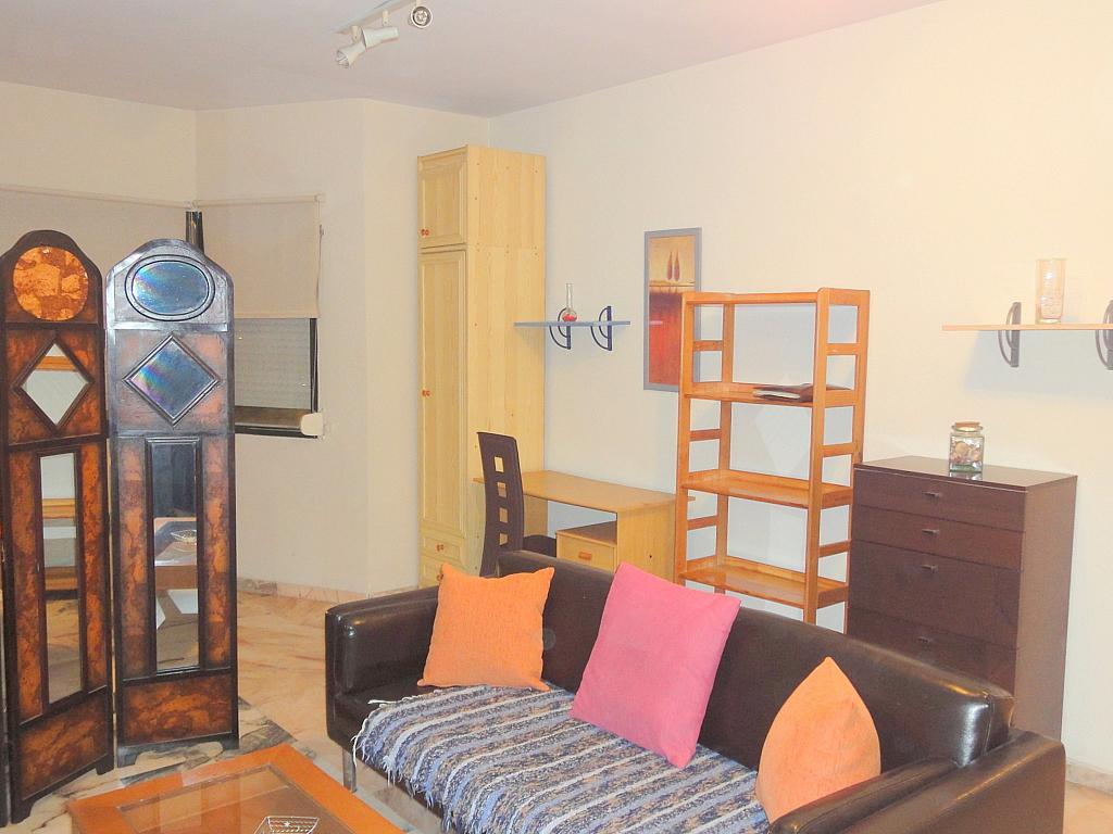 Estudio en alquiler en calle Alcalde Luis Uruñuela, Este - Alcosa - Torreblanca en Sevilla - 123701411