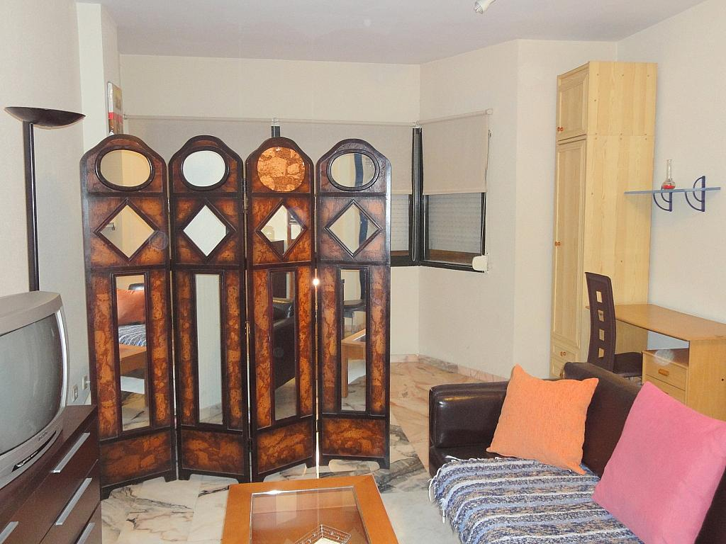 Estudio en alquiler en calle Alcalde Luis Uruñuela, Este - Alcosa - Torreblanca en Sevilla - 123701417