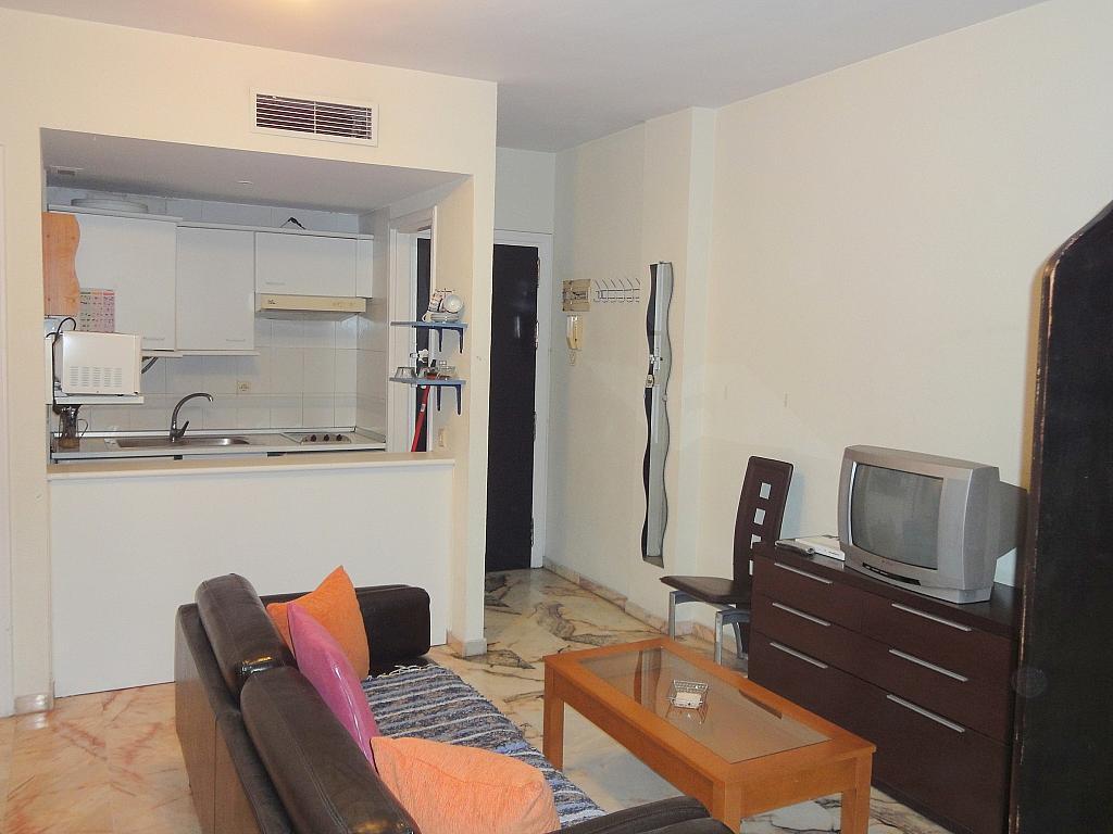 Estudio en alquiler en calle Alcalde Luis Uruñuela, Este - Alcosa - Torreblanca en Sevilla - 123701449
