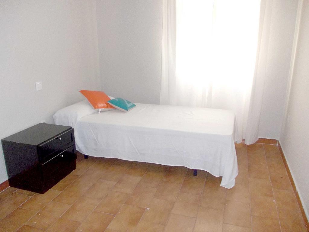 Piso en alquiler en calle La Palmera, Reina Mercedes en Sevilla - 125513692